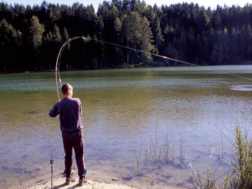Fischen©TourismusverbandMühlen|Freizeitangebote