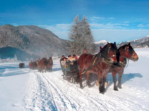 Pferdeschlittenfahrt©TVBRussbach/DachsteinWest