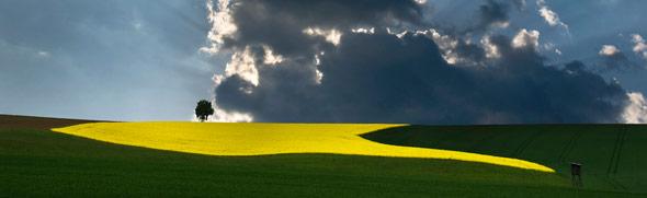Landschaft © Tourismusverband s'INNVIERTEL
