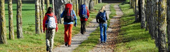 Allee weist Wanderern den Weg, Basedow, Mecklenburgische Schweiz © TMV/Werk 3
